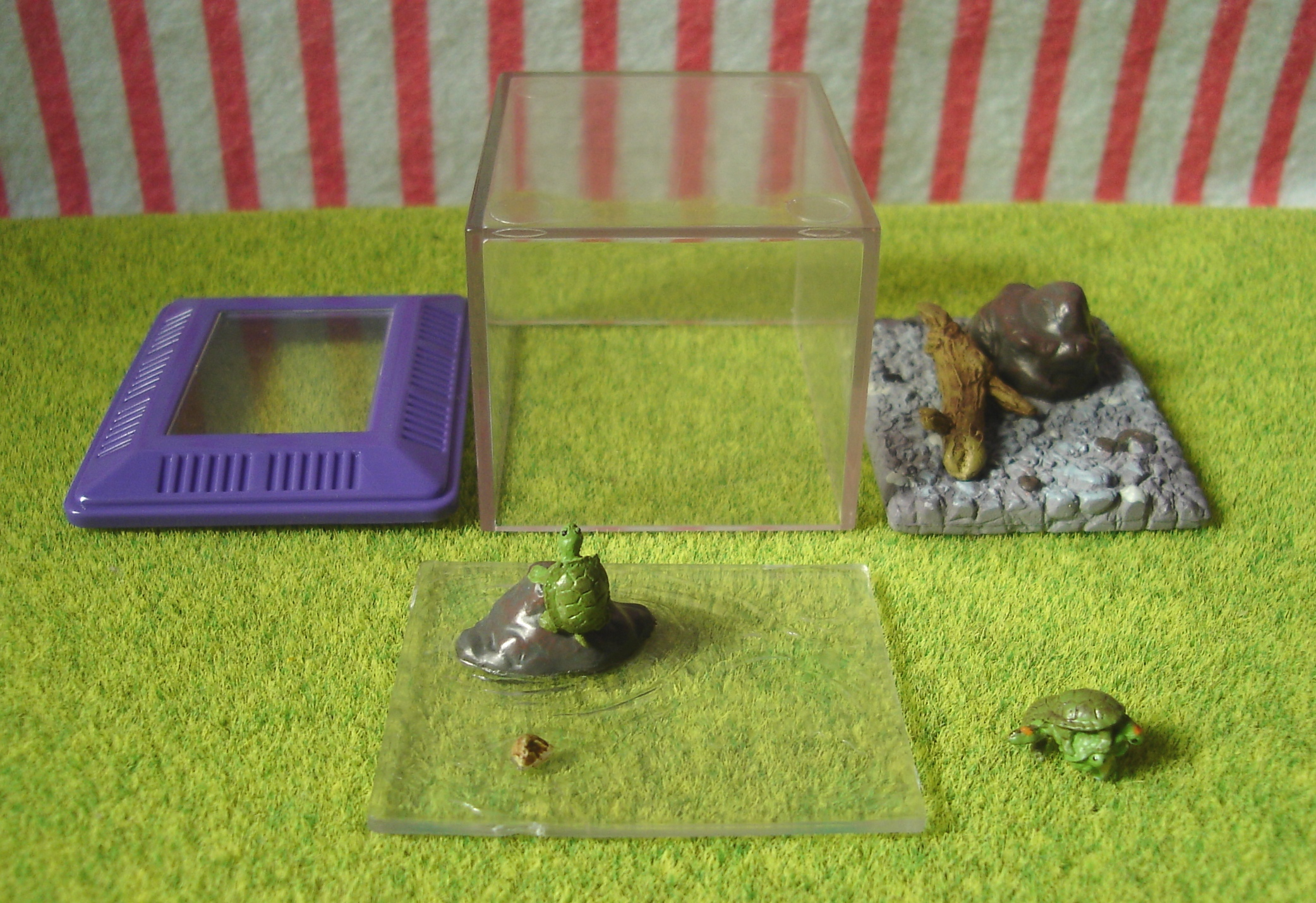 ... , miniatures, all, miniature toys, pets kept at school, turtle, tank